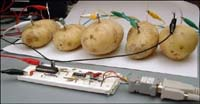 real potato-powered Web server